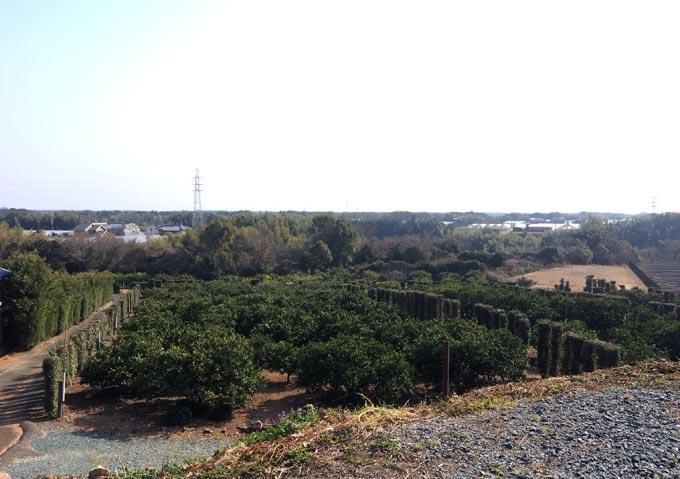 浜松市西区 倉田園 とても景色がいい