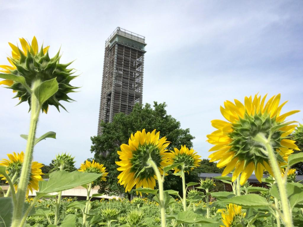 浜名湖ガーデンパーク 展望塔