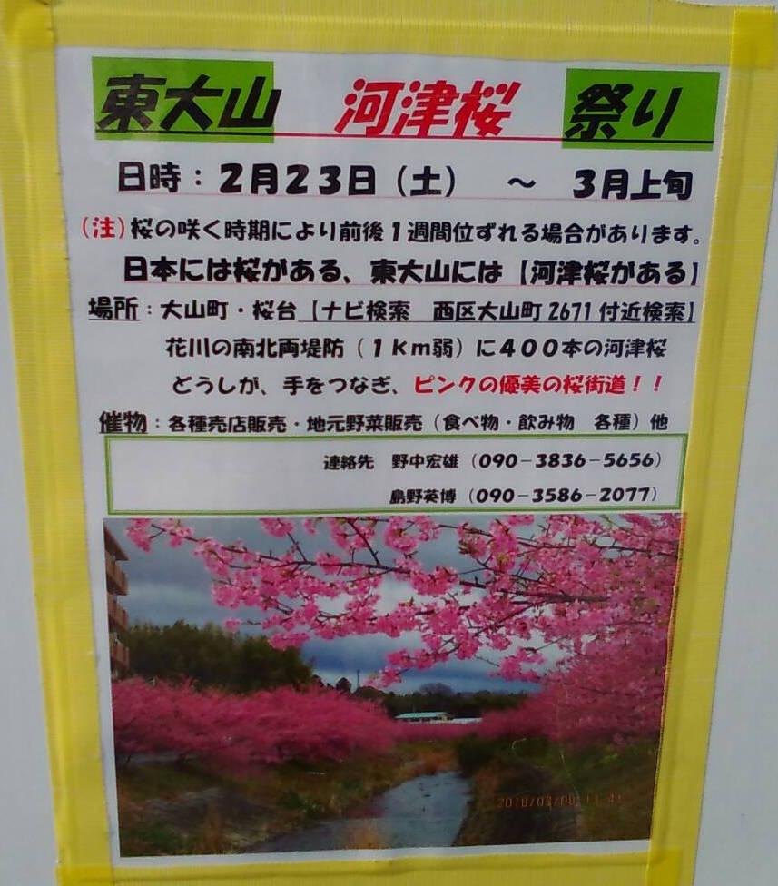 2019年東大山河津桜祭り告知