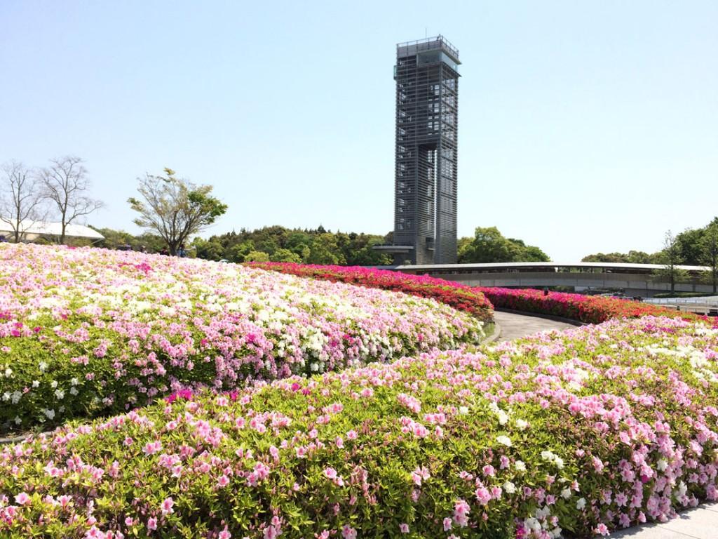 浜名湖ガーデンパークの展望台とツツジ