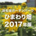 浜名湖ガーデンパークひまわり畑サムネ