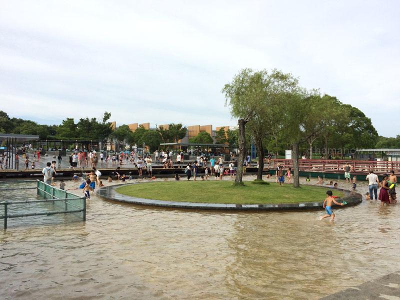 ガーデンパークの水遊び広場の池