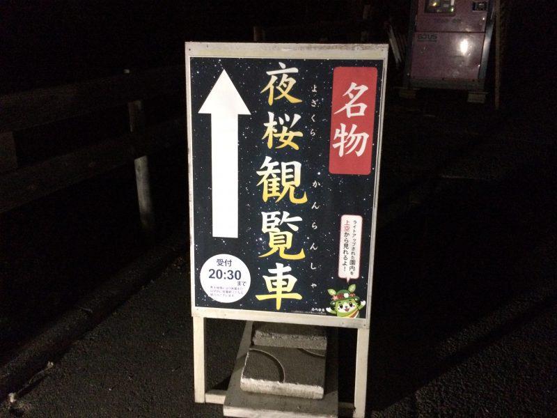 浜松フラワーパークの夜桜観覧車看板